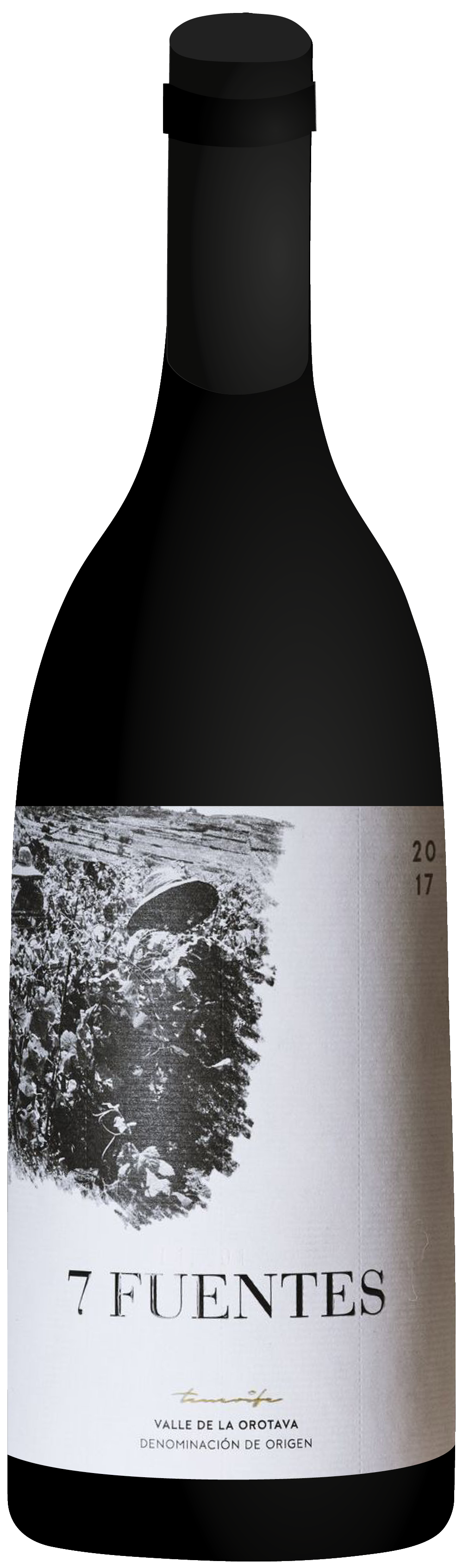 the natural wine company club june 2020 spain suertes del marques 7 fuentes